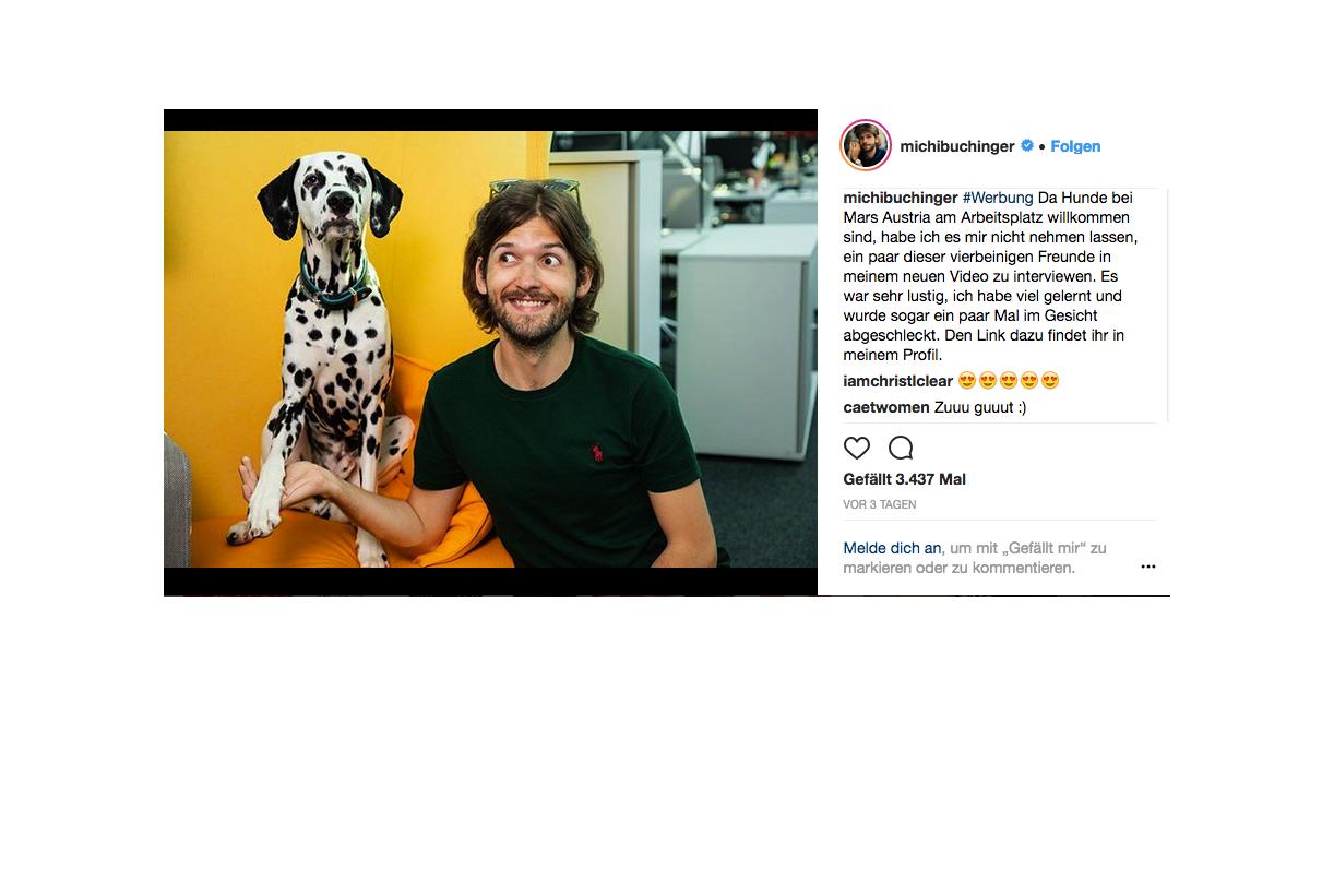 Michi Buchingers Instagram Account